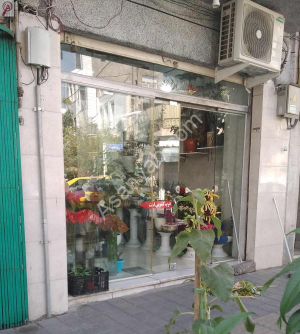 گلفروشی خیابان دبستان
